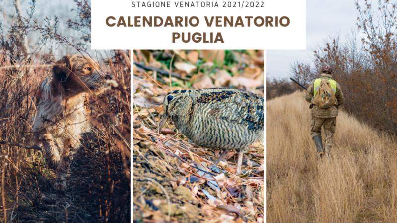 Notizia Studio Amica - Calendario Venatorio regionale annata 2021/2022